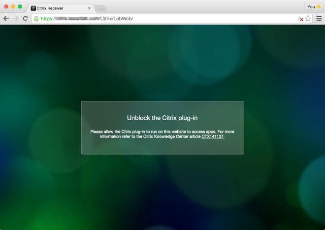 blocked_citrix_plugin