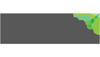 lewan-partner-logo-papercut